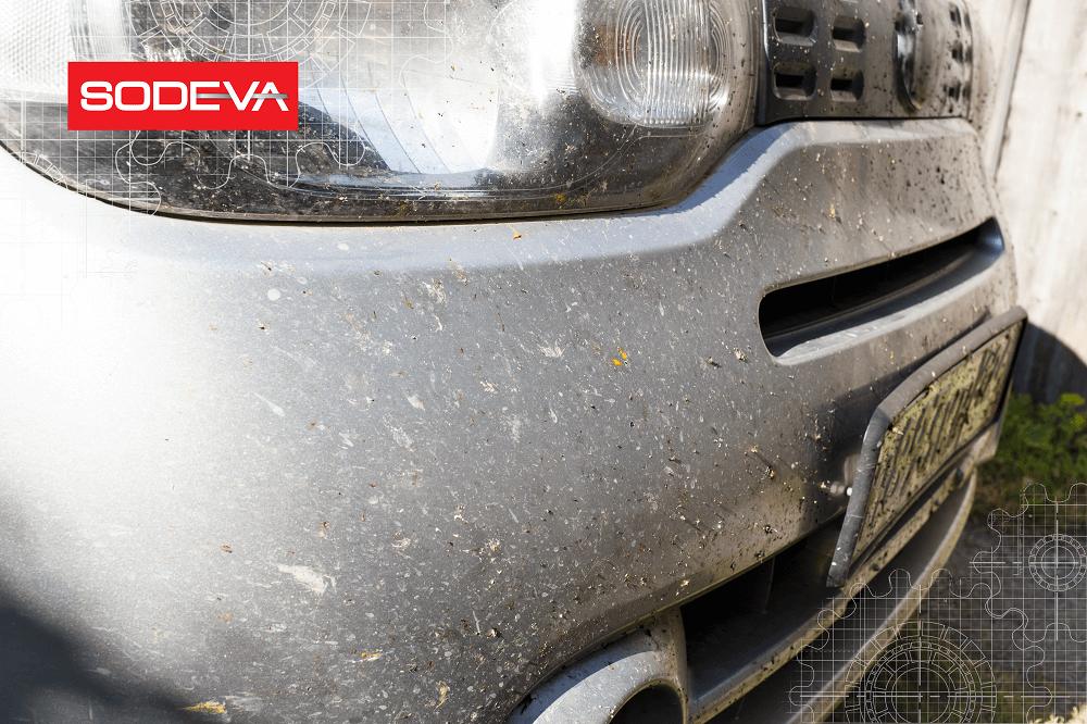 Pare-choc de voiture couvert d'insectes, à nettoyer avec des lingettes pour sèche-linge